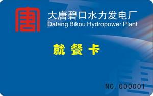 大唐碧口水力发电厂
